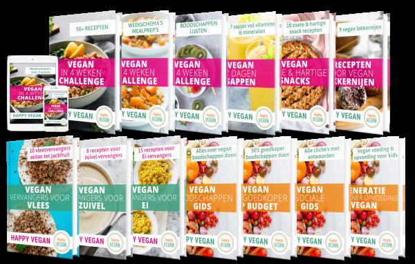 mega impact programma happy vegan lifestyle recepten